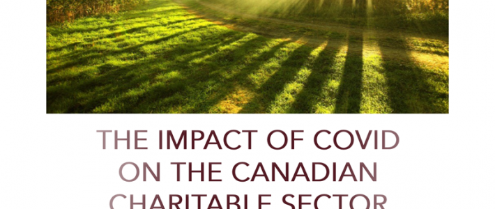 Financial Post Comments on my Canadian Charity Sector Research Report